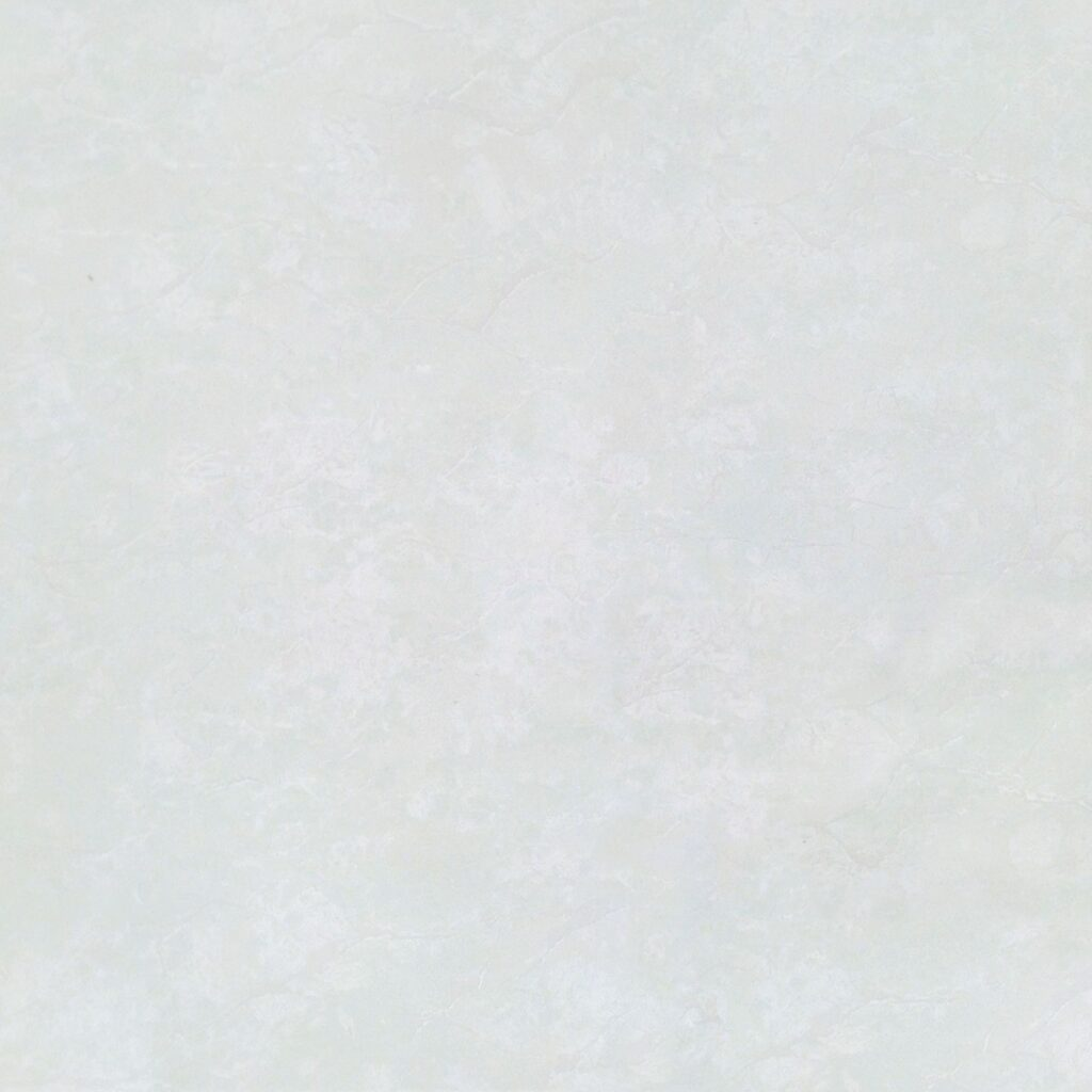Gạch Đồng Tâm 60x60 6060PLATINUM001
