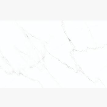 Gạch Đồng Tâm 25x25 2525CARARAS002