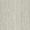 Gạch lát nền Taicera 60x60 P67208N