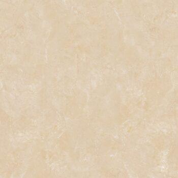 Gạch Lát Nền Viglacera B6005 60x60